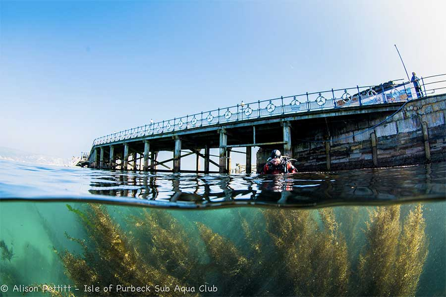 Swanage Pier - Underwater Photograph Exhibition